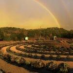 rainbowoverlabyrinth12_13_20